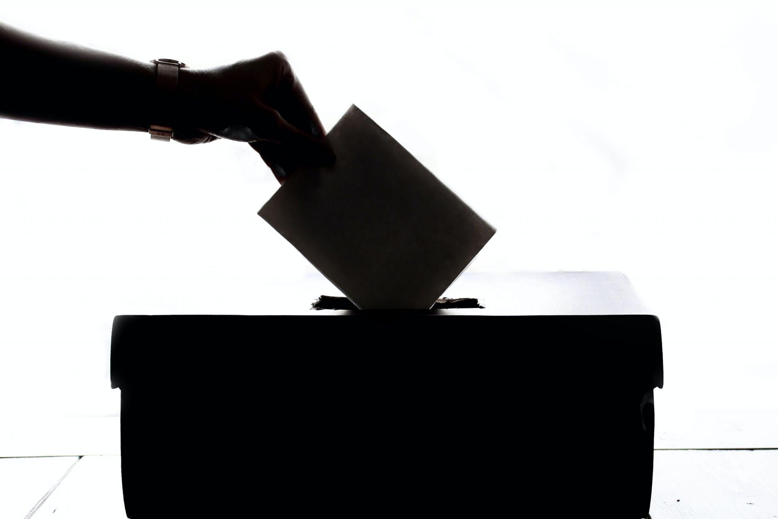 person voting silhouette